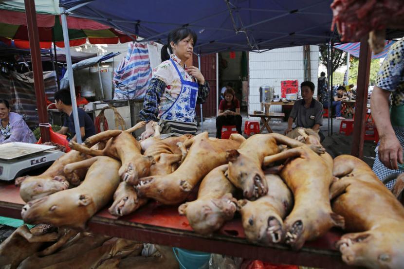daging-anjing-dijual-di-festival-daging-anjing-tahunan-di_200622153045-751.jpg